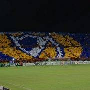 APOEL fans - Tottenham Hotspur hospitality in the Champions League