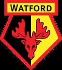 Watford Badge