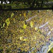 Borussia Dortmund at the Champions League - Tottenham Hotspur tickets and travel at the new stadium
