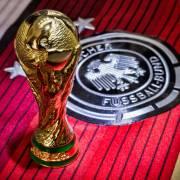 World Cup Blog - Tottenham International players