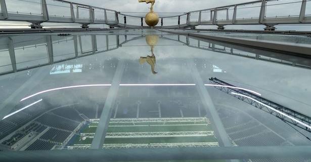 Spurs Golden Cockerel