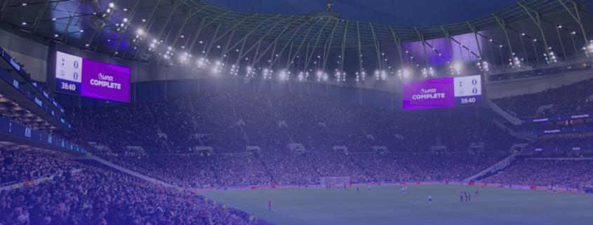 tottenham fans in stadium